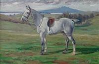 grey hunter and rangitoto by beatrix charlotte dobie