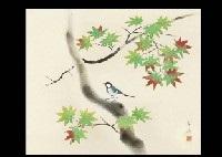 blue maple tree by kayo yamaguchi