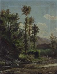 paesaggio con torrente by doménico cambiaso