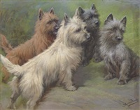 cairn terriers by fannie moody