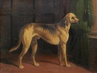 hound in an interior by william barraud