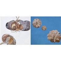 garlic (in 2 parts) by ngakan dewa made ardana