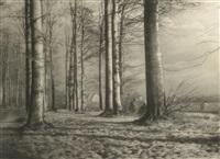 la lisiere du bois (near the forest) by léonard misonne