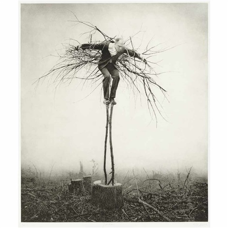 guardian by robert shana parkeharrison