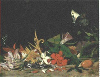 convovulus, lily and other flowers with a butterfly by salvador abril y blasco