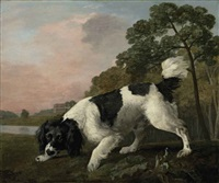 a black and white spaniel following a scent, in a landscape with a lake and country house beyond by george stubbs
