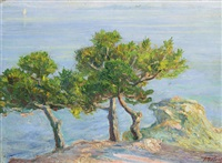 pine trees in halki by konstantinos maleas