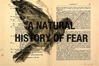 a natural history of fear by william kentridge