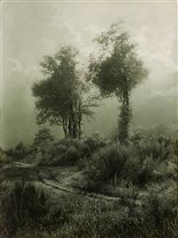 deux arbres en campine by léonard misonne