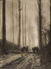 dans la forêt by léonard misonne