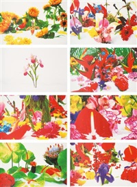 winter garden (set of 8) by marc quinn