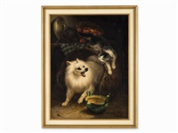 the intruder by henriette ronner-knip