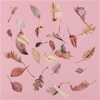 leaf study (pink) by jonathan yeo