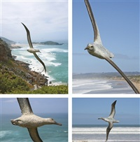 wandering albatross by robert leggat