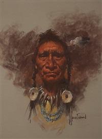 bull plume blackfoot by harley brown