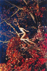 marieke (fall foliage) by ryan mcginley