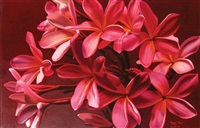 bungan kamboja pink by poppy drews liem