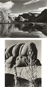 selected images (5 works) by edward weston