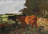 vaches à l'abreuvoir by adrien gabriel voisard-margerie