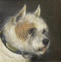 a portrait of a terrier by edward aistrop