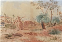 kangaroos grazing by samuel thomas gill