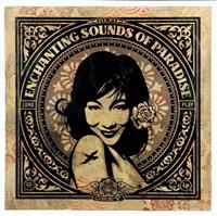 enchanting sounds by shepard fairey