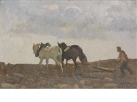 ploughing by beppe ciardi
