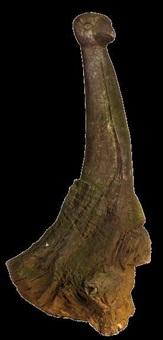 mythological bird by jackson mbhazima hlungwane