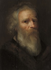 head of a bearded man by jan andreas lievens the younger