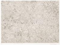 dots accumulation by yayoi kusama