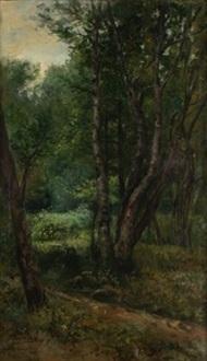 bosque de fontainebleau by francesc guasch i homs
