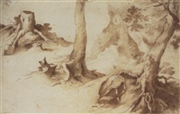 studies of tree trunks and tree stumps by paulus willemsz van vianen