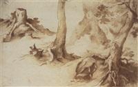 studies of tree trunks and tree stumps by paulus willemsz van vianen