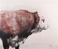 hereford bull by angus mcdonald