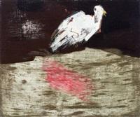 witte duif by jan van heel