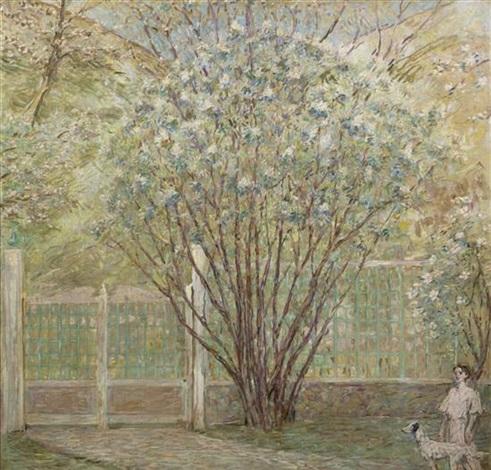 white lilacs by robert reid