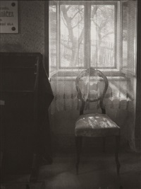 at the janacek's by josef sudek