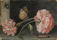 a pink rose and a red and white carnation on a stone ledge with a bee, a butterfly, a dragonfly and a caterpillar by abraham bosschaert