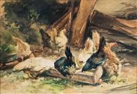 galline by aldo raimondi