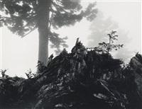 morning mist, cascade pass, washington by ansel adams