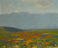 blooming wildflowers by ferdinand kaufmann