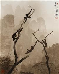 gibbons at play, tianzi mountain by don hong-oai