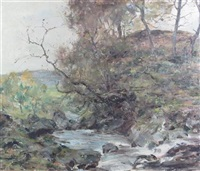 a stream in springtime by harry macgregor