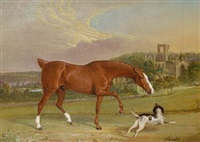horse and dog before kirkstall abbey by john widdas