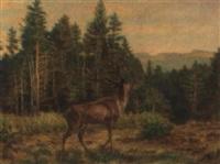 hirschbrunft by carl massmann