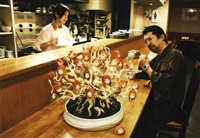 ai-chan bonsai (pine) at japanese-style restaurant by makoto aida