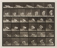 arising from the ground with pamphlet in one hand, plate 270 (from animal locomotion) by eadweard muybridge