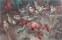 congress of titmice by johannes gerardus keulemans