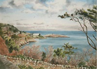 view of dalkey island by naomi peppard