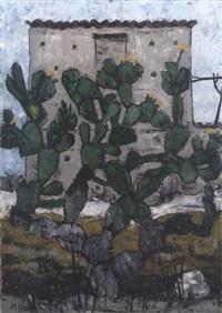 cactus by vittorio basaglia